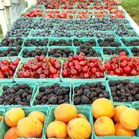 AGB berries